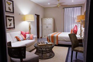Robusta room